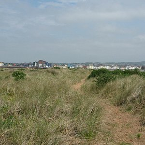 Looking east towards Exmouth
