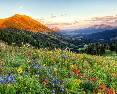 Crested Butte Photographer: J.C. Leacock