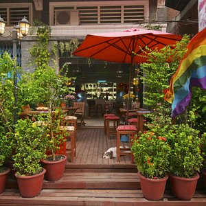 Our cozy wood terrace, full of plants