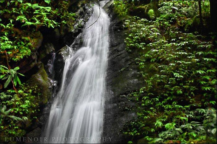 Abundance of Streams at Shivapuri NP.