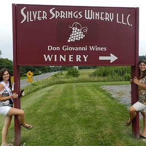 Handcrafted Gold Medal winning wines