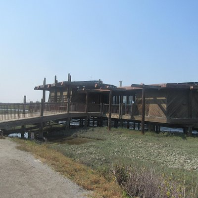 Lucy Evans Nature Center, Palo Alto, Ca