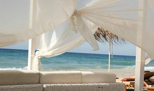 Baja Beach Club - Windy day on the Beach