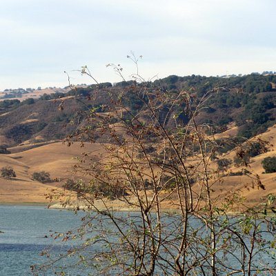 Anderson Lake, Anderson Lake County Park, Morgan Hill, CA