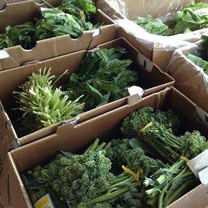 Beautiful, organic produce