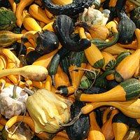 La Fête de la Courge et des saveurs d'automne en octobre