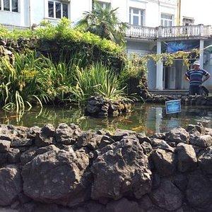 garden of aquarium area