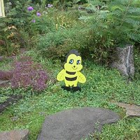 The only bee to be seen on a rainy day :)