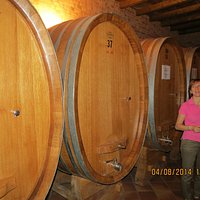 Cellar of the Albino Rocca winery