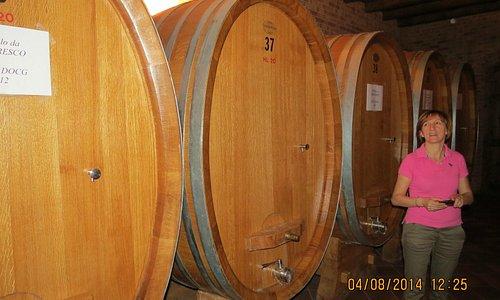 Cellar of the Albino Rocca winery