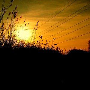 Bowers Marsh sunset