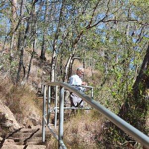 Cedar Creek Trail Mt T