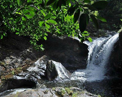 Weg zu den Olanguan Falls, Binduyan