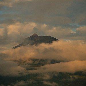 Climb Mt. Pico 2.351m