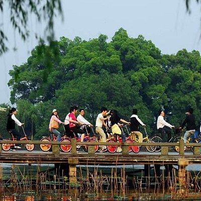 a biking trip around West Lake, Hangzhou