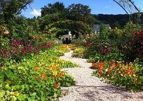 Monet's Garden visit