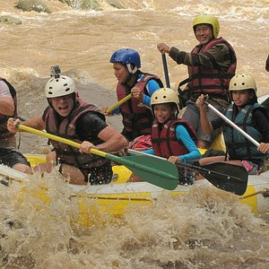 Rapids on day 1