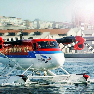 Seabird Airlines www.flyseabird.com