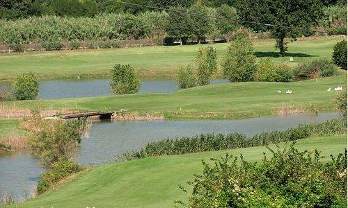 Immersi nella natura del Conero Golf Club