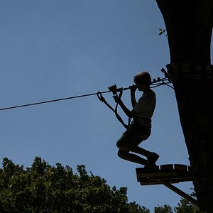 More ziplines than anywhere in the country