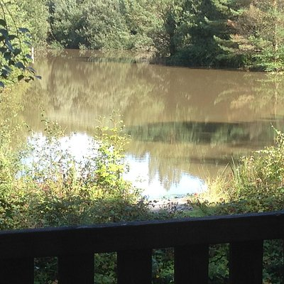 View from balcony over tench lake