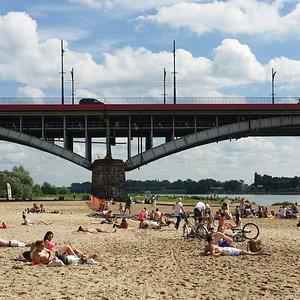 Plaża koło Mostu Poniatowskiego