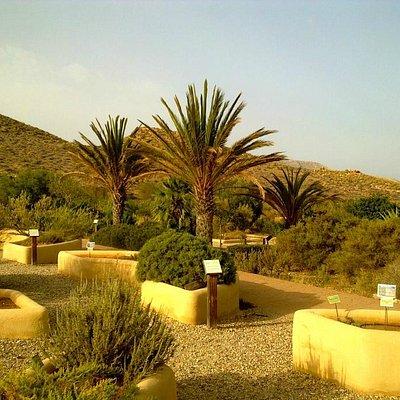 Jardín botánico del Albardinal