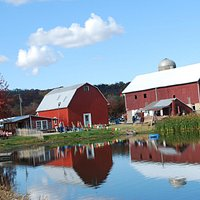 Red barns, green fields, and blue skies