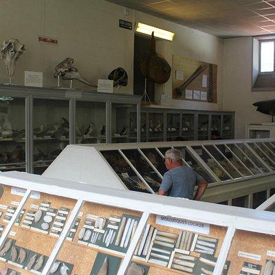 Museum at Arcachon