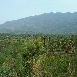 siddharkovil surroundings