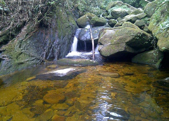 Cachoeira - Trilha Suspensa