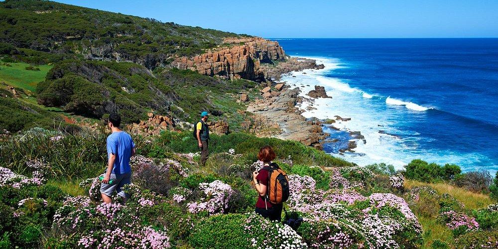 Cape to Cape Walking Trail