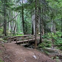 Trail & stream