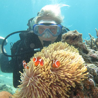Diver with Clownfish