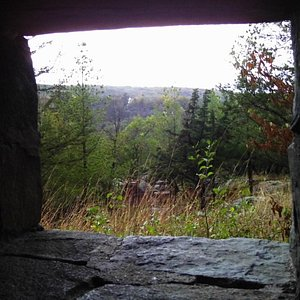 Looking out a window in a shelter