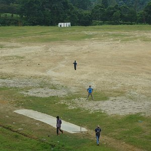 Early morning cricket game on the spacious grounds of the park.