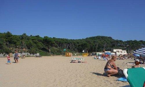 Castell beach, September 2014
