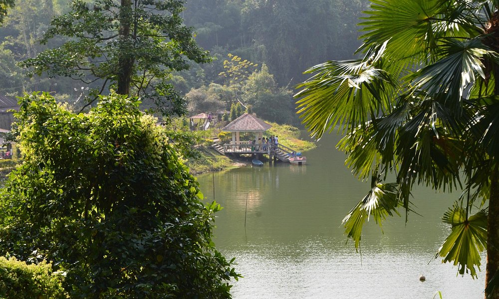 The lake and its surroundings green is simply beautiful.