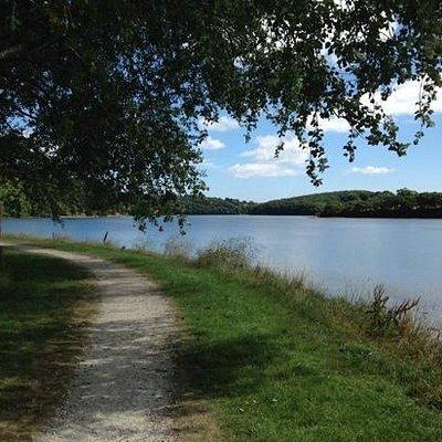 Riverside walk at Boscawen Park