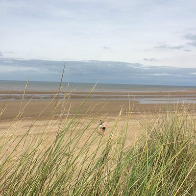 Holme Dunes, out to see