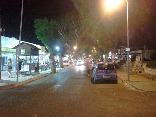 Eucalyptus street