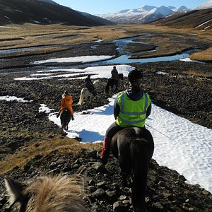 Iceland nature, beautyful weather and great horses :)
