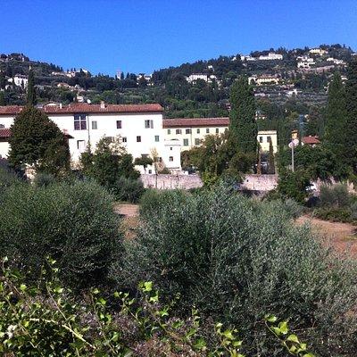 Fiesole viewed from San Domenico