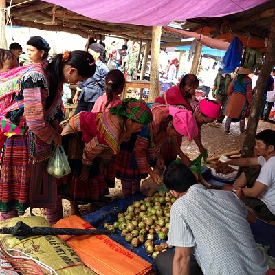 Tuesday Market -Cocly-