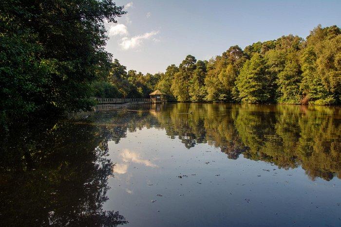 Titmus Lake in Tilgate Park