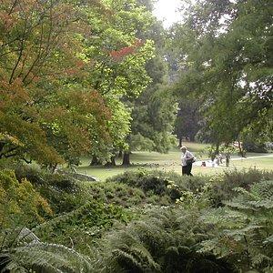 Un parc à l'anglaise
