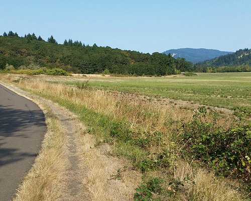 Bald Hill Natural Area and Midge Cramer Path