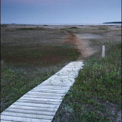 Moonset at Dorcas Bay (Singing Sands)