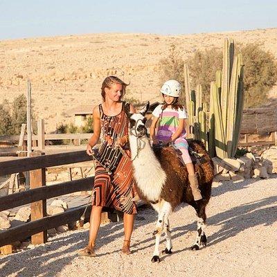Lama ride - Photo by Chain Ravia