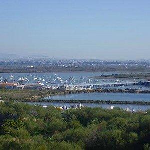 Vista del muelle de Gallineras desde El Cerro